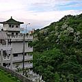 09-0419 土城桐花公園 + 承天禪寺