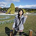 2011台北花博行