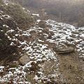 2012/2/22梨山張雨生之家、合歡山、清境農場。