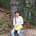 9/2、3台中南投山區遊