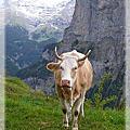 2011瑞士之旅-少女峰