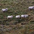 2017冰島
