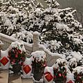 杭州春雪遊 Hangzhou: Snowy Spring Festival