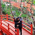 Tokyo Gardens December 2015 東京花園 2015年12月