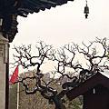 西安,古中國14朝古都