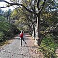 2015新春小旅行