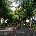 2017泗水步道