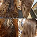 Chu hair salon髮藝設計✂️染髮作品