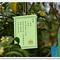 2014 2月白白毫襌寺1