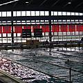 991212澎湖菊島盃泳賽
