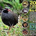 2014沖繩深度生態之旅 4月團開始揪團了!