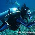 菲律賓宿霧Moalboal潛水