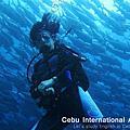 潛水薄荷島Balicasag