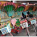 旗津三 輪車浮水印