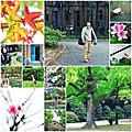 20120331_台灣大學散步