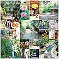 20120705_[台中] 武陵農場。涼爽的桃山瀑布
