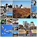 20130228_[2013 京阪奈] 大阪城公園。梅林賞花