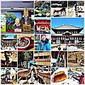 20130304_[2013 京阪奈]  奈良。南都散策