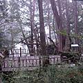 2007-Oct 太平山