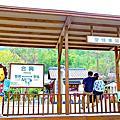 【新竹】愛情火車站-內灣線合興車站