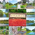 2015年11月18日星期三(台東森林公園)