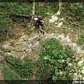 2009-09-26宇內溪瀑布群-->赫威神木群