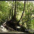 2010-05-01巴福越嶺古道