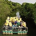 103.07.26-103.07.28嘉南美地文化生態之旅