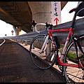 【單車生活】單車杉林浴