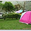新竹溫馨庭園露營