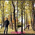 ※ 2013 秋 ※ ♥ 永登浦仙遊島公園賞楓 ♥