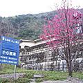 2006春節宜花東之餐風露宿之旅
