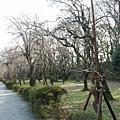 日本--京都