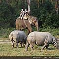 尼泊爾--奇旺國家公園