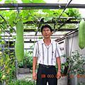 勤美屋頂疏蔬果推廣中心
