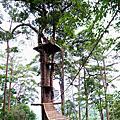 達達大聲說~Jungle Flight[清邁叢林泰山滑翔探險]搶鮮體驗