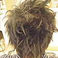 20080405剪頭髮