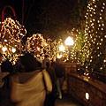 加州行 DisneyLand Park #1