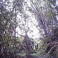 [2005年9月24日] 深坑土庫岳健行