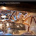 2010.11.13八海精緻鍋物