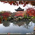 2008.11.23東寺.東福寺.拉麵小路