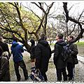2009.3.10京都御所賞梅