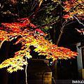 2015/11 日本北海道