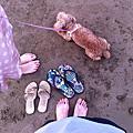 沙崙海邊衝拉拉~ 2011.8.21