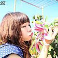 フラワーシーラブ[台中]新社國際花毯節