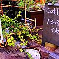花蓮 CAFFE FIORE