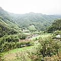 一粒云露營字第034號-新竹尖石-自然野趣露營區