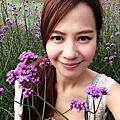 2014/04/13紫藤花咖啡園