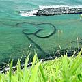 20060626-28八德街小綱團隊菊島所謂的畢旅= =+