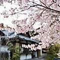 ∥ 2012 關西。春櫻 ∥ → Day 1
